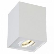 Накладной светильник Crystal Lux Clt 420 CLT 420C WH